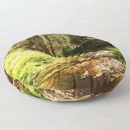 A Muir Woods Scene Floor Pillow
