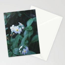 Forget Me Not Stationery Cards
