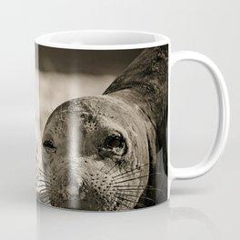 Elephant seal face close up in sepia tone Coffee Mug