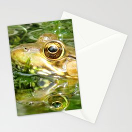 Watercolor Frog, Northern Green Frog 04, Middletown, Maryland, Heads in the Pond Stationery Cards