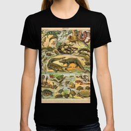 Reptiles Chart Nature Vintage Snake Turtle Alligator T-shirt