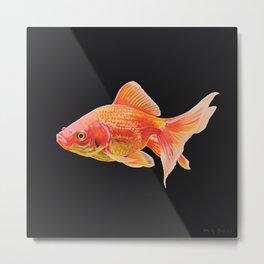 Goldfish painting on black Metal Print