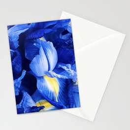 Indigo Blue Iris Floral With Yellow Accents Stationery Cards