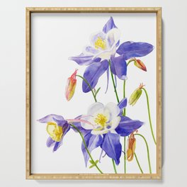 Blue Columbine on White Serving Tray