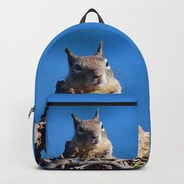 A Little Cheesecake Backpack