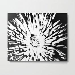 Large Chrysanthemum - BWScale Metal Print
