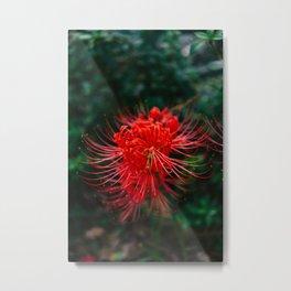Charleston Hurricane Lily VII Metal Print