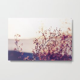 FIND BEAUTY IN EVERTHING Metal Print