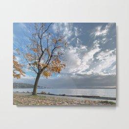 Autumn Seascape Metal Print