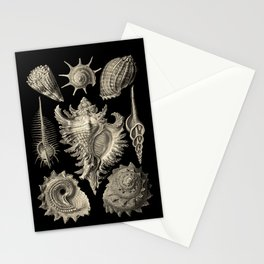 Ernst Haeckel Prosobranchia Sea Shells Stationery Cards