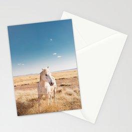 West Texas Wild IV Stationery Cards