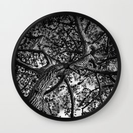 A Study of a Canadian Pine Tree Wall Clock