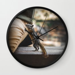 Hungry Chipmunk In Rocky Mountain National Park Colorado Wall Clock