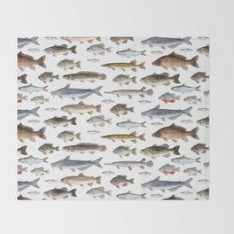 A Few Freshwater Fish Decke