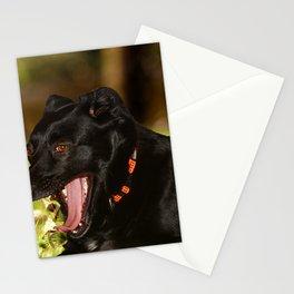 Quod nigrum Diva Stationery Cards
