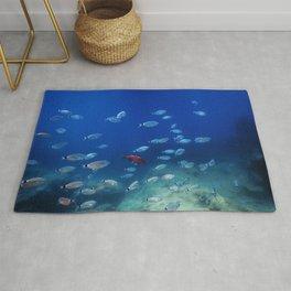 Fish School Underwater. Fishes underwater background. Rug