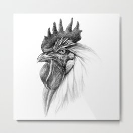 The Rooster SK065 Metal Print