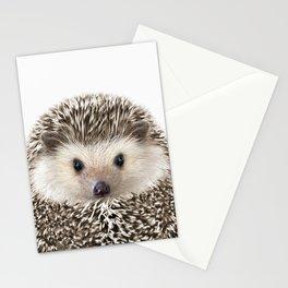 Hedgehog Art Stationery Cards
