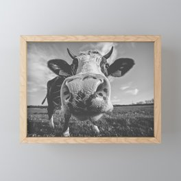 Inquisitive Cow Framed Mini Art Print