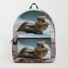 Talk To The Hand - OLena Art Backpack
