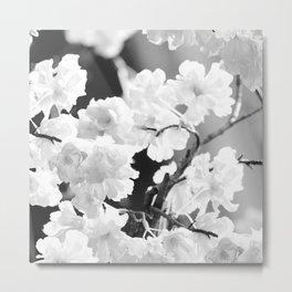 Cherry Tree Flowers in Black and White #decor #society6 #buyart Metal Print