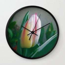 The NewBorn Wall Clock