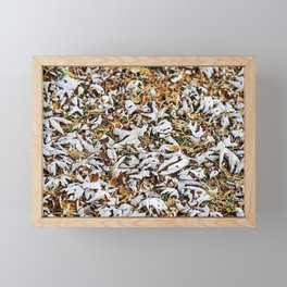 Fallen Autumn Leaves 4 Framed Mini Art Print