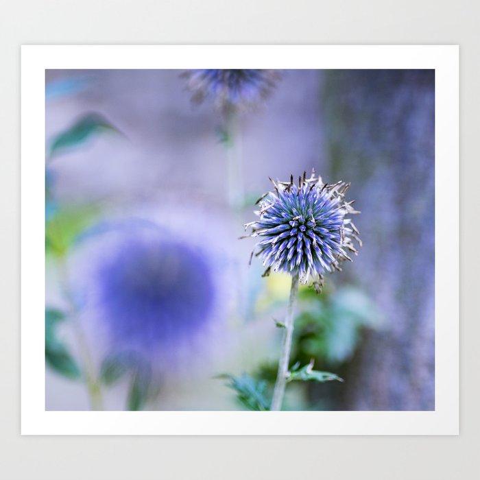 Purple blue Art Print
