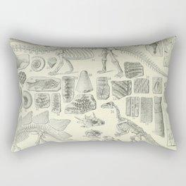 Fossil Chart Rectangular Pillow