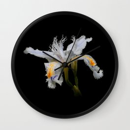 Elegant Iris Japonica / Fringed Iris Flower Wall Clock