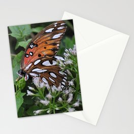 Colorful Butterfly in the Springtime Stationery Cards