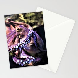 Octopus Oddity Stationery Cards