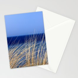 Dried long grass with blue sea behind and blue sky Stationery Cards