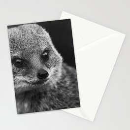 grey mongoose Stationery Cards