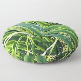 Fresh Morning Dew Glistening on Elegant Grass Blades Floor Pillow