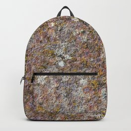 Colorful old rusty metal Backpack