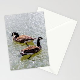 Opposite Ducks | Animal Collection | Nature | Travel Photography Stationery Cards