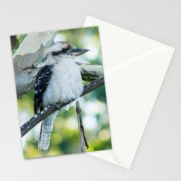 Laughing Kookaburra Stationery Cards