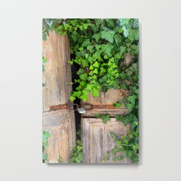 Old Wooden door with ivy | Travel photography from Greece | Fine art photograpy print in color.  Metal Print