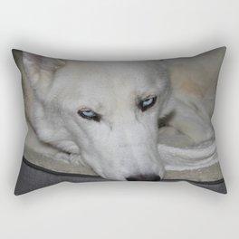 siberian husky in his bed Rectangular Pillow