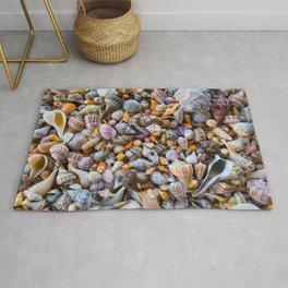 Seashell Collection Rug