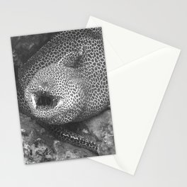 Coiled fat eel Stationery Cards