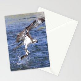 Watercolor Bird, Osprey 12, Yellowstone, Wyoming Stationery Cards