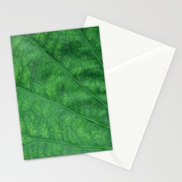 Green Leaf Closeup Texture Stationery Cards