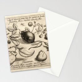 Joris Hoefnagel - Mors ulitma Linea Rerum 02 Stationery Cards
