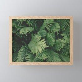Green Fern Leaves Framed Mini Art Print