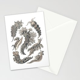 Ernst Haeckel Nudibranch Sea Slugs Monochrome Silver Stationery Cards