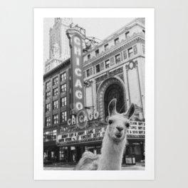 Chicago Llama Art Print