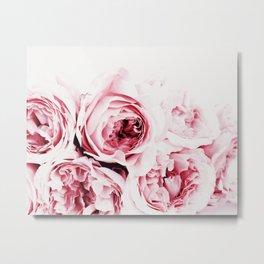 Pink Peonies Art Print By Synplus Metal Print