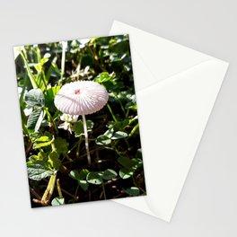 Little White Mushroom Stationery Cards